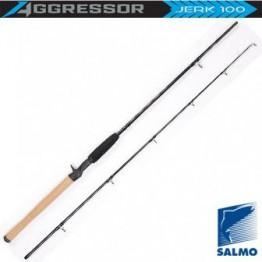 Спиннинг Salmo Aggressor Jerk 100, углеволокно, штекерный, 1,8 м, тест: до 100 г, 160 г
